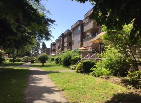 2444 Wilson Avenue #1, Port Coquitlam, BC V3C 1Z6 (#R2181573) :: Vallee Real Estate Group