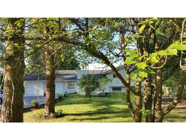 18038 92 Avenue, Surrey, BC V4N 3Y5 (#R2190267) :: Kore Realty Elite