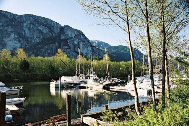 1460 Pemberton Avenue #107, Squamish, BC V8B 0J9 (#R2208033) :: HomeLife Glenayre Realty