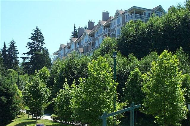 3033 Terravista Place #2, Port Moody, BC V3H 5A3 (#R2247717) :: Vancouver House Finders