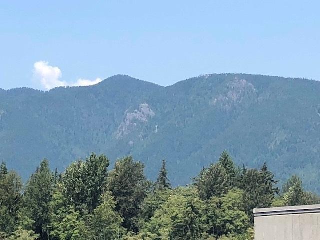 2016 Fullerton Avenue #1308, North Vancouver, BC V7P 3E6 (#R2294652) :: West One Real Estate Team