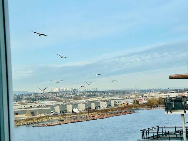 10033 River Drive - Photo 1