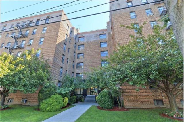 2212 Plumb 1 Street 1G, BROOKLYN, NY 11229 (MLS #424361) :: RE/MAX Edge