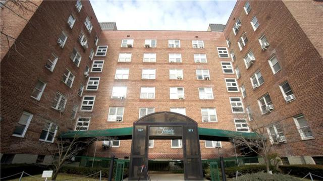 373 Avenue S 5F, BROOKLYN, NY 11223 (MLS #426508) :: RE/MAX Edge