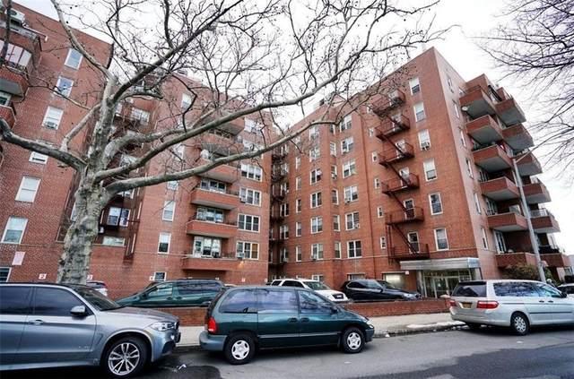 3311 Shore Parkway 5D, BROOKLYN, NY 11235 (MLS #444153) :: RE/MAX Edge
