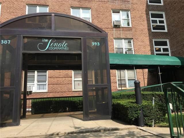 393 Avenue S 4F, BROOKLYN, NY 11223 (MLS #444928) :: RE/MAX Edge