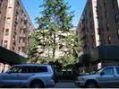 1213 Avenue Z Street - Photo 1