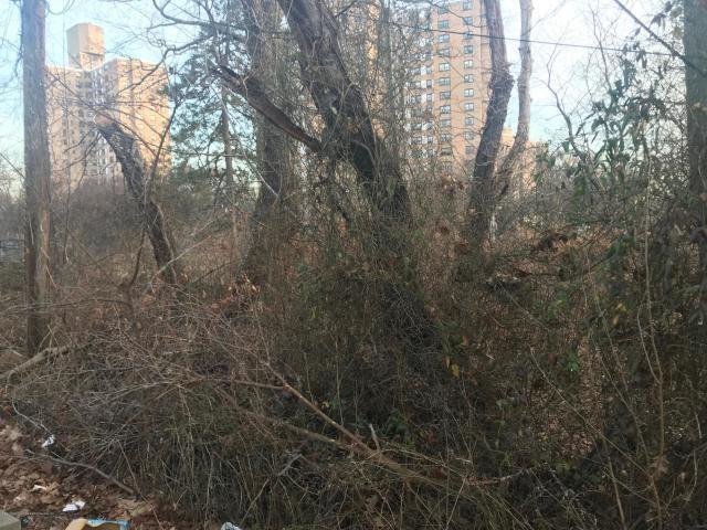 0 Hunter Avenue, Bronx, NY 10475 (MLS #426135) :: RE/MAX Edge
