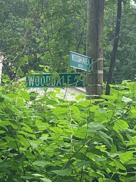 47 Woodhaven Avenue - Photo 1