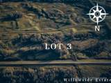 Lot 3 Willowside Estates - Photo 2