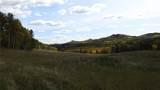 80 Acres Bordering Kananskis - Photo 14
