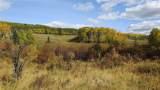 80 Acres Bordering Kananskis - Photo 20