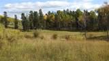 80 Acres Bordering Kananskis - Photo 25