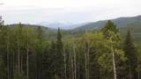 43 Acres Bordering Kananaskis - Photo 13