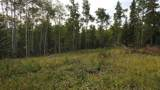 43 Acres Bordering Kananaskis - Photo 17