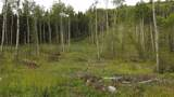 43 Acres Bordering Kananaskis - Photo 2