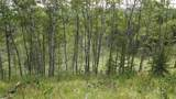 43 Acres Bordering Kananaskis - Photo 5