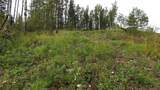 43 Acres Bordering Kananaskis - Photo 6