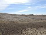 406 Sand Hills Drive - Photo 8