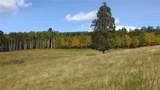 80 Acres Bordering Kananskis - Photo 2