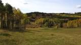 80 Acres Bordering Kananskis - Photo 9