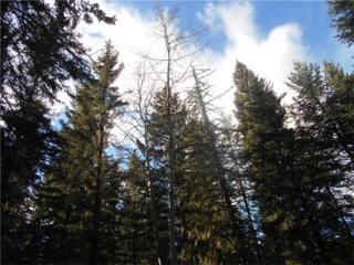21.34 Bighorn County, Rural Bighorn M.D., AB T4C 1T1 (#C4088093) :: Canmore & Banff