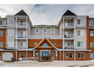 8 Prestwick Pond Terrace SE #305, Calgary, AB T2Z 4P3 (#C4094876) :: The Cliff Stevenson Group