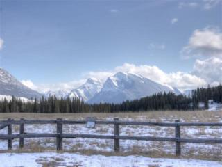 4 Van Horne, Canmore, AB T1W 2X7 (#C4101701) :: Canmore & Banff
