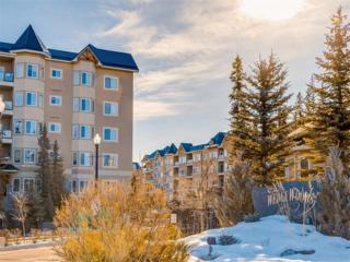20 Discovery Ridge Close SW #425, Calgary, AB T3H 5X4 (#C4104239) :: The Cliff Stevenson Group