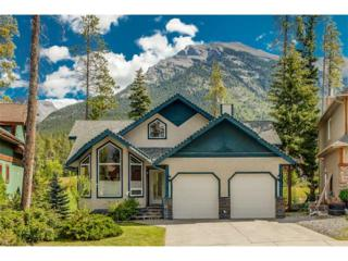 6 Terrace Place, Canmore, AB T1W 2Y3 (#C4104278) :: Canmore & Banff