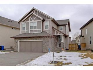 174 Cranarch Place SE, Calgary, AB T3M 0W7 (#C4104362) :: The Cliff Stevenson Group