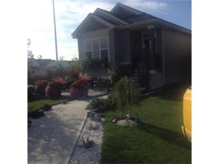 2044 New Brighton Grove SE, Calgary, AB T2Z 1G1 (#C4105132) :: The Cliff Stevenson Group