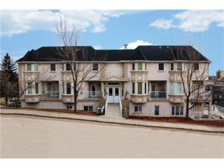 212 3 Street NE #204, Calgary, AB T2E 8Z4 (#C4105259) :: The Cliff Stevenson Group