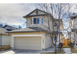 1055 Bridlemeadows Manor SW, Calgary, AB T2Y 4L1 (#C4105321) :: The Cliff Stevenson Group