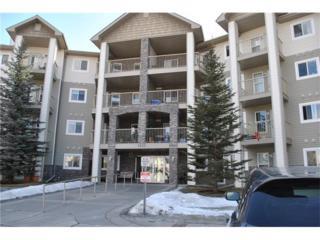 5000 Somervale Court SW #435, Calgary, AB T3R 1R5 (#C4105341) :: The Cliff Stevenson Group