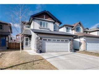 146 Auburn Glen Circle SE, Calgary, AB T3M 0K9 (#C4105345) :: The Cliff Stevenson Group