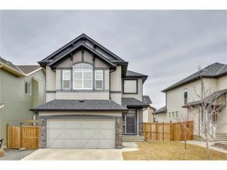 BRIGHTONCREST 14 Common SE, Calgary, AB T2Z 0N8 (#C4105708) :: The Cliff Stevenson Group