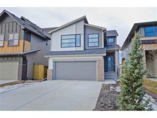 67 Walden Green SE, Calgary, AB T2X 0Z4 (#C4106970) :: The Cliff Stevenson Group