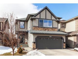 168 Royal Oak Terrace NW, Calgary, AB T3G 6A6 (#C4106972) :: The Cliff Stevenson Group