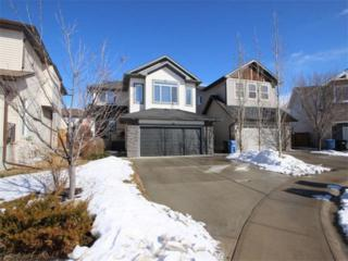 12 Tuscany Reserve Green NW, Calgary, AB T3L 0A4 (#C4107108) :: The Cliff Stevenson Group