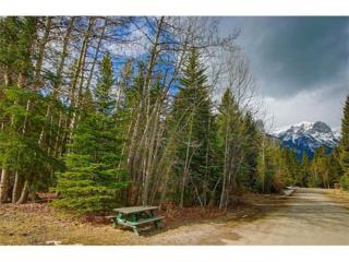 825 14th Street, Canmore, AB T1W 1W7 (#C4110192) :: Canmore & Banff
