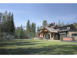 5 Woodside Lane, Canmore, AB T1W 1T1 (#C4110241) :: Canmore & Banff