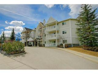 1080A Cougar Creek Drive #110, Canmore, AB T1W 1A4 (#C4110672) :: Canmore & Banff