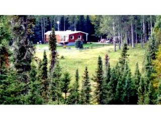 MD Bighorn Twp 304, Rural Bighorn M.D., AB 66054 (#C4110763) :: Canmore & Banff