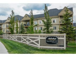 30 Cranfield Link SE #216, Calgary, AB T3M 0C4 (#C4111344) :: Canmore & Banff