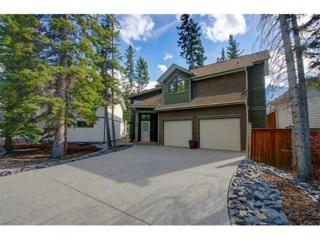 107 Spring Creek Drive, Canmore, AB T1W 2C1 (#C4092217) :: Canmore & Banff