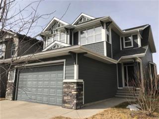 65 Auburn Glen Lane SE, Calgary, AB T3M 0M8 (#C4104260) :: The Cliff Stevenson Group