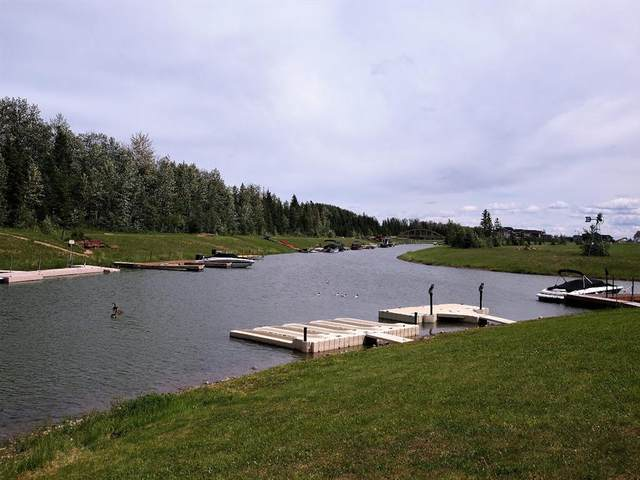 463 Summer Crescent, Rural Ponoka County, AB T4S 1V9 (#A1004149) :: Canmore & Banff