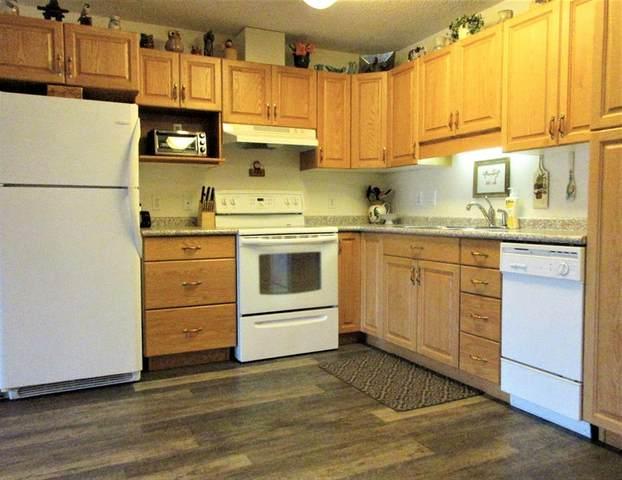 101 3 Street #401, Sundre, AB T0M 1X0 (#A1007213) :: Redline Real Estate Group Inc