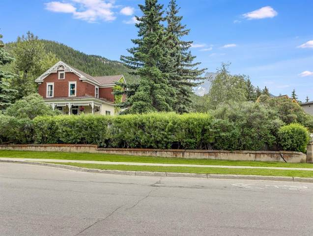 328 Muskrat Street, Banff, AB T1L 1A8 (#A1009775) :: Redline Real Estate Group Inc